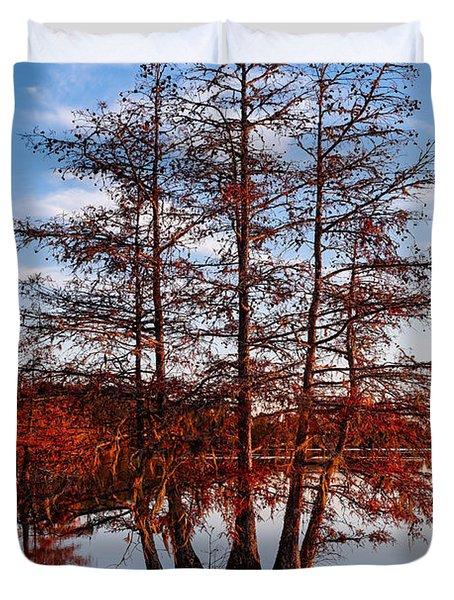 Stand Of Bald Cypress Trees At Ba Steinhagen Lake In Martin Dies Jr State Park - Jasper East Texas Duvet Cover
