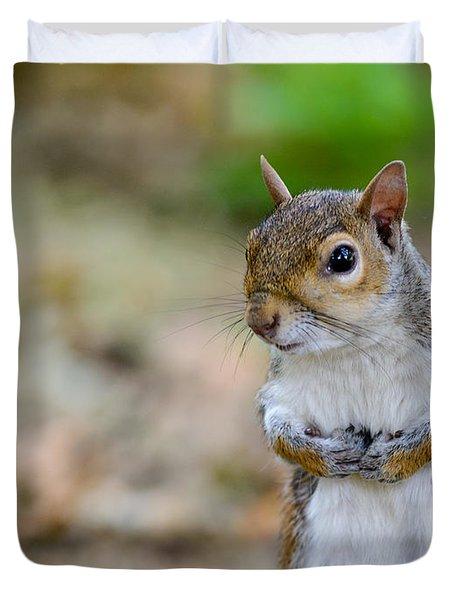 Standing Squirrel Duvet Cover by Matt Malloy