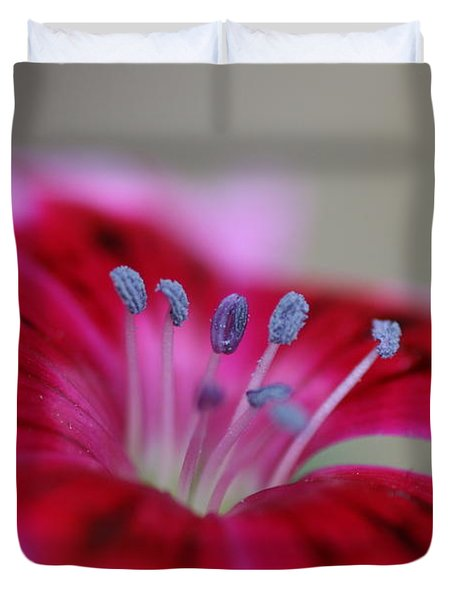 Standing Tall Sweet William Duvet Cover