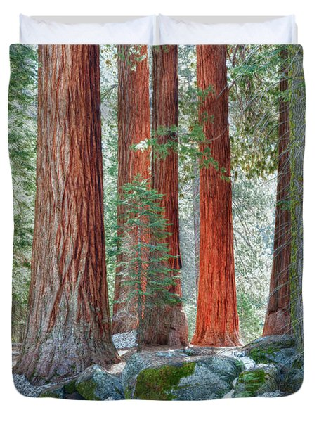 Standing Tall - Sequoia National Park Duvet Cover by Sandra Bronstein