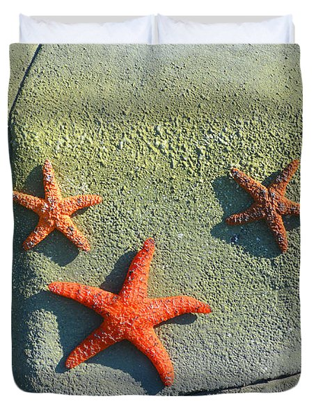 Starfish On The Rocks Duvet Cover by Luther Fine Art