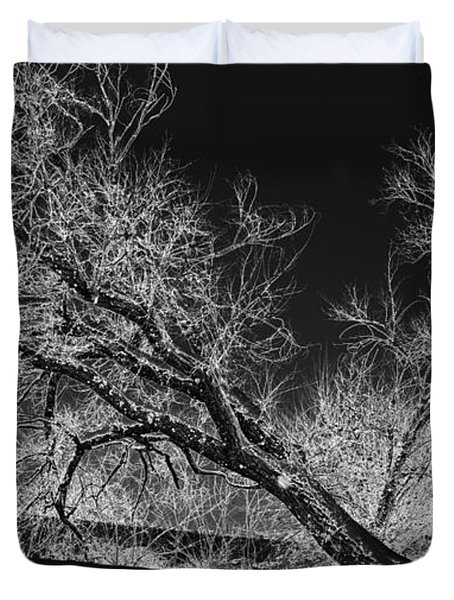 Starkly Duvet Cover by Betty LaRue