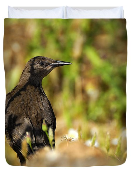 Starling Duvet Cover by Guido Montanes Castillo