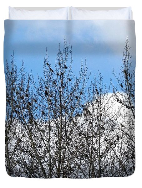 Starlings In The Cottonwoods Duvet Cover by Will Borden