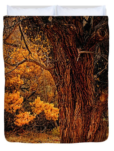 Stately Oak Duvet Cover by Priscilla Burgers