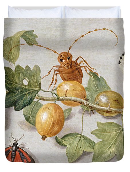 Still Life Of Branch Of Gooseberries Duvet Cover by Jan Van Kessel
