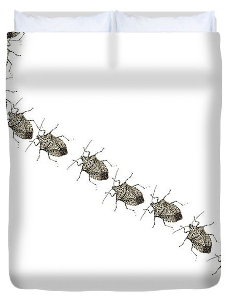 Stink Bugs I Phone Case Duvet Cover