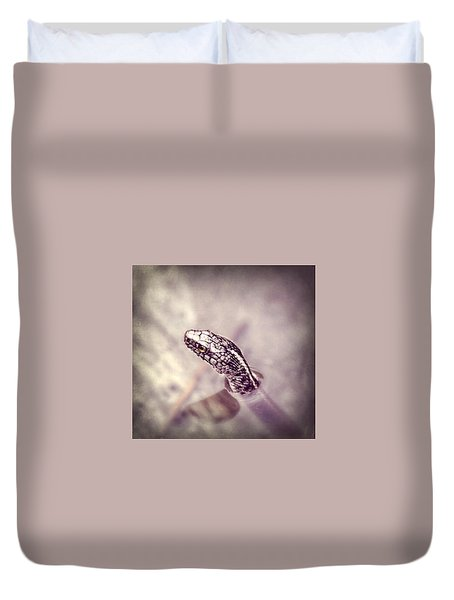 Duvet Cover featuring the photograph Stony Stare by Melanie Lankford Photography