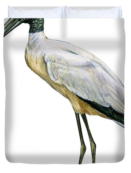 Stork Duvet Cover by Anonymous
