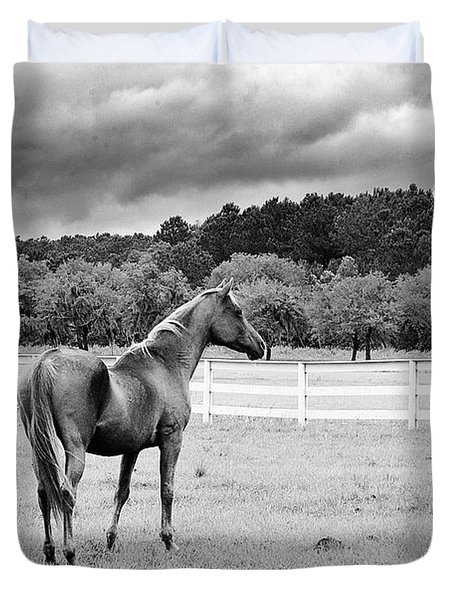 Stormy Pasture Duvet Cover