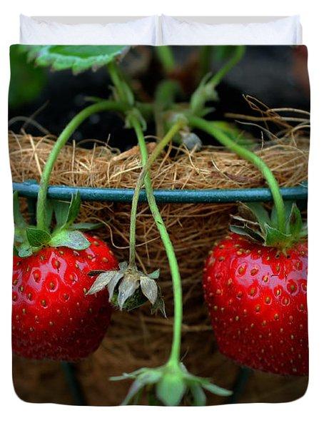 Strawberries Duvet Cover by Pamela Walton