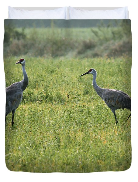 Duvet Cover featuring the photograph Strolling Cranes by Debbie Hart
