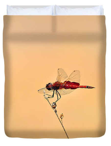 Stunning Saddlebags Duvet Cover by Al Powell Photography USA