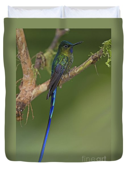 Stylish Hummer... Duvet Cover by Nina Stavlund
