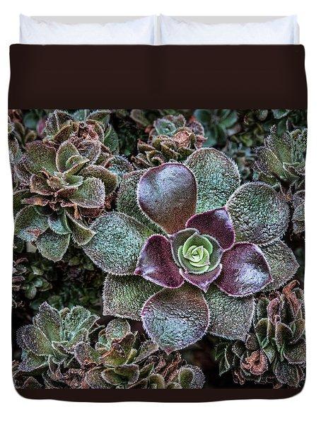 Succulent Art Duvet Cover