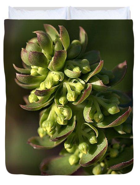 Succulent Duvet Cover by Joy Watson