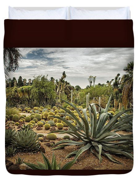 Succulents At Huntington Desert Garden No. 3 Duvet Cover