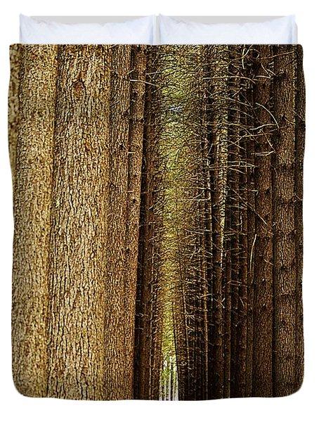 Sugar Pine Walk Duvet Cover