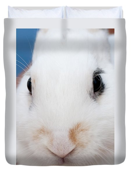sugar the easter bunny 1 -A curious and cute white rabbit close up Duvet Cover
