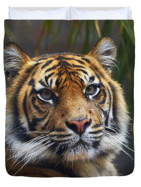 Sumatran Tiger Duvet Cover
