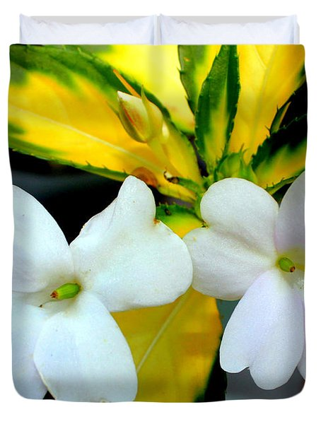 Sun Patiens Spreading White Variagated Duvet Cover