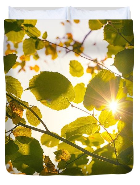 Duvet Cover featuring the photograph Sun Shining Through Leaves by Chevy Fleet
