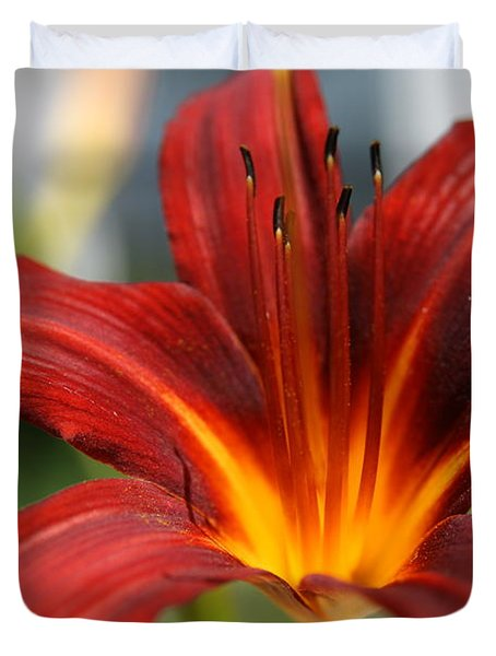 Duvet Cover featuring the photograph Sunburst Lily by Neal Eslinger