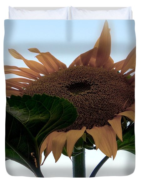 Sunflower 4 Duvet Cover