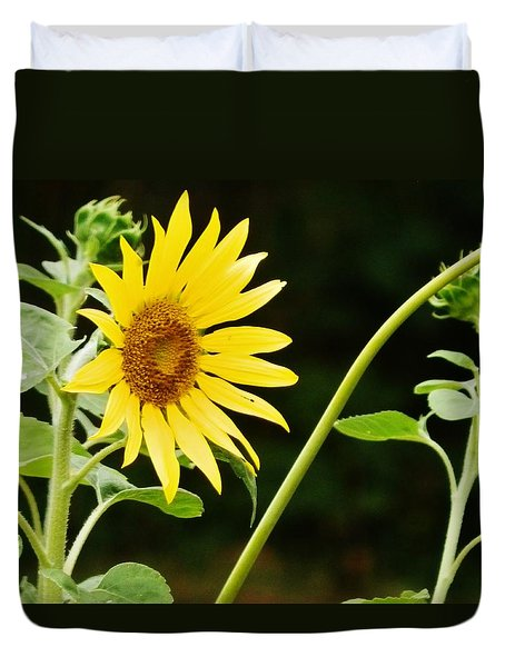 Duvet Cover featuring the photograph Sunflower Cheer by VLee Watson
