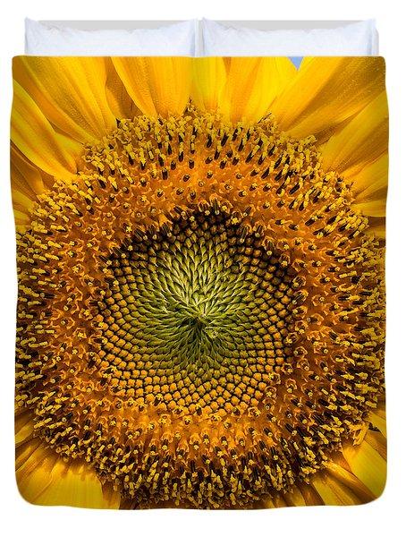 Sunflower Closeup Duvet Cover