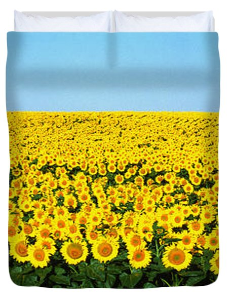 Sunflower Field, North Dakota, Usa Duvet Cover by Panoramic Images