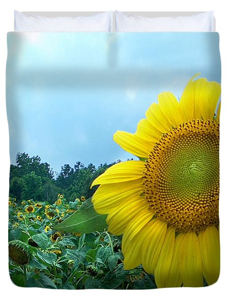 Sunflower Field Of Yellow Sunflowers By Jan Marvin Studios  Duvet Cover