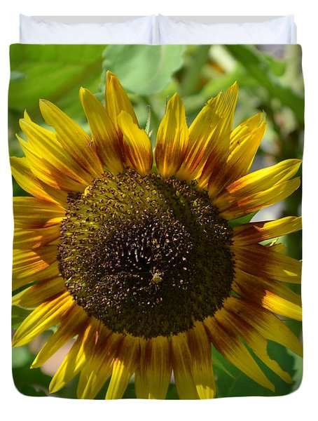 Sunflower Glory Duvet Cover by Luther Fine Art