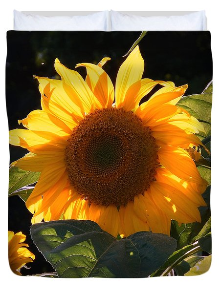 Sunflower - Golden Glory Duvet Cover