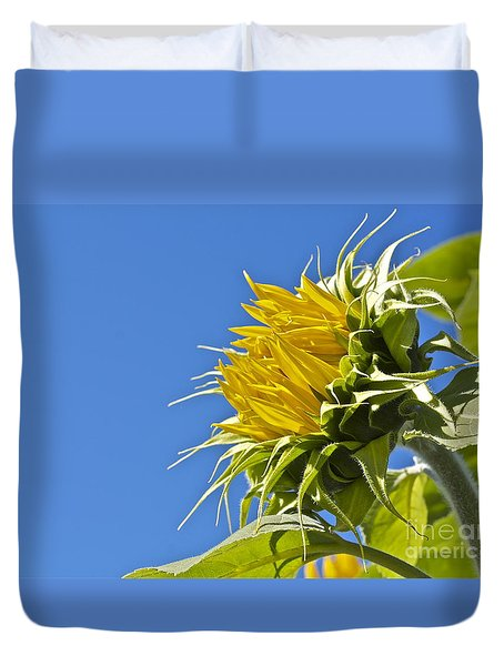 Duvet Cover featuring the photograph Sunflower by Linda Bianic