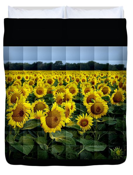 Duvet Cover featuring the photograph Sunflower Squared by Kathy Churchman