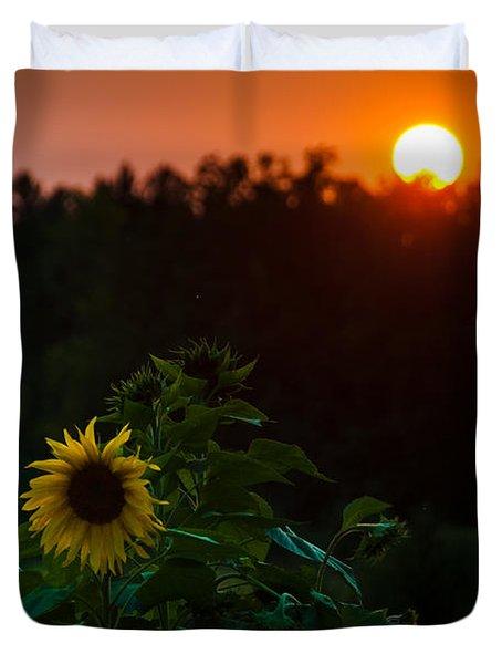 Sunflower Sunset Duvet Cover by Cheryl Baxter