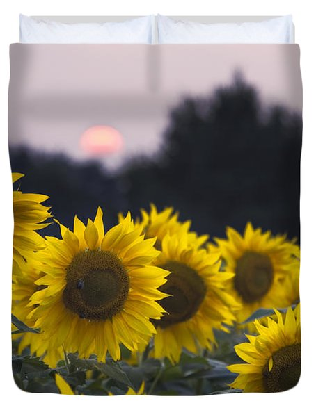 Sunflower Sunset - D008554 Duvet Cover