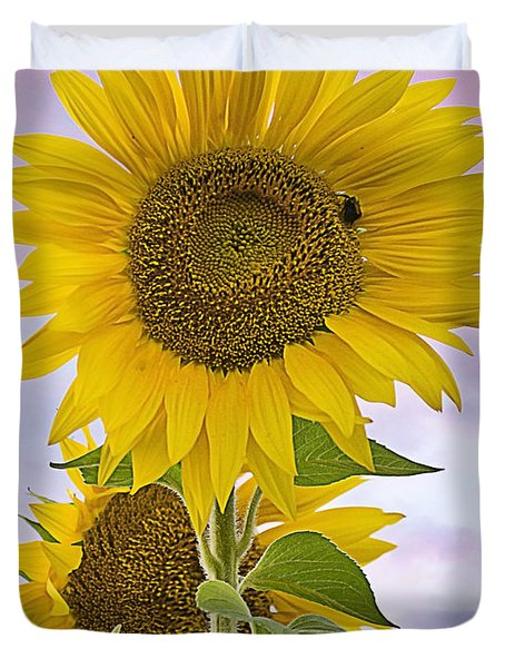Sunflower With Colorful Evening Sky Duvet Cover