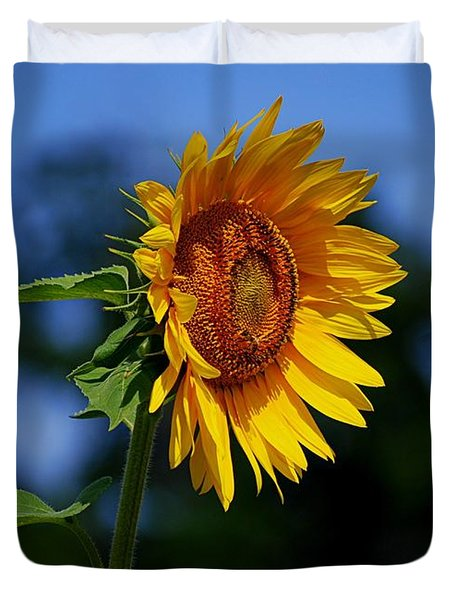 Sunflower With Honeybee Duvet Cover by Catherine Sherman