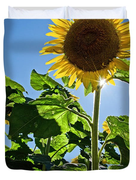 Sunflower With Sun Duvet Cover