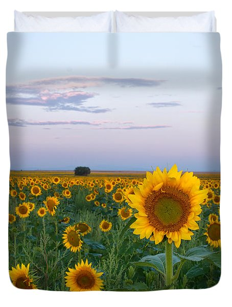 Sunflowers At Sunrise Duvet Cover