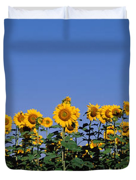 Sunflowers In A Field, Marion County Duvet Cover