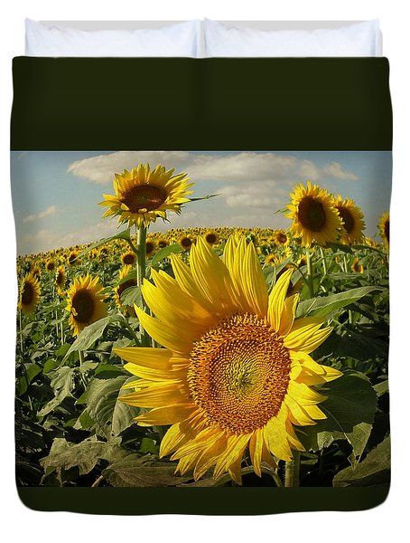 Kansas Sunflowers Duvet Cover