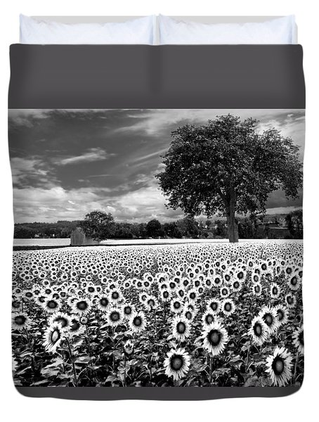 Sunflowers In Black And White Duvet Cover by Debra and Dave Vanderlaan