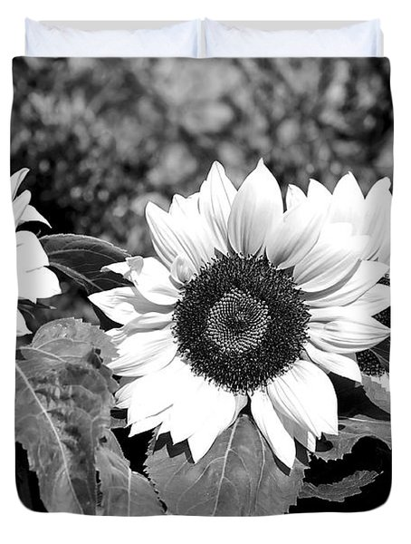 Sunflowers In Black And White Duvet Cover by Kaye Menner