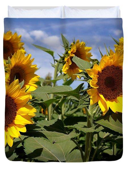Sunflowers Duvet Cover by Kerri Mortenson