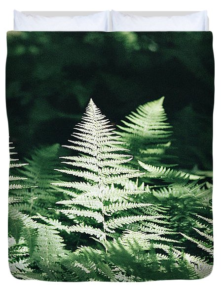 Duvet Cover featuring the photograph Sunlight And Shadows-algonquin Ferns by David Porteus