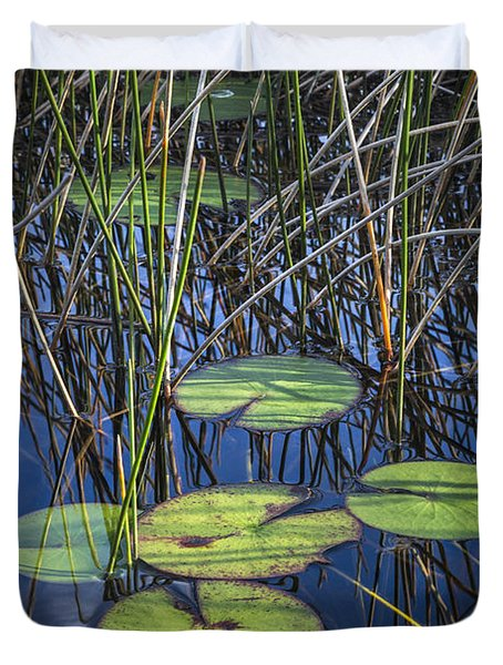 Sunlight On The Lilypads Duvet Cover by Debra and Dave Vanderlaan