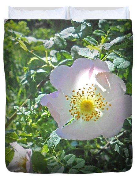Sunlight On The Wild Pink Rose Duvet Cover by Patricia Keller